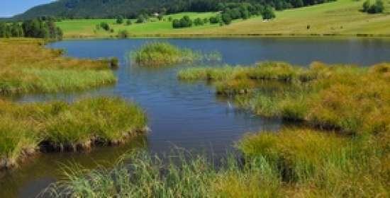 Lacs et tourbières