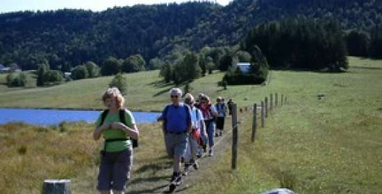 Hiking Organisers